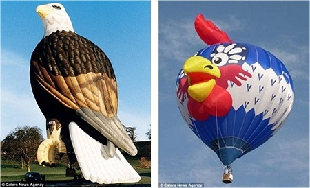 Two very different birds: The company produces between 150 and 200 balloons a year - including this Eagle, left, and an Angry Bird balloon, right